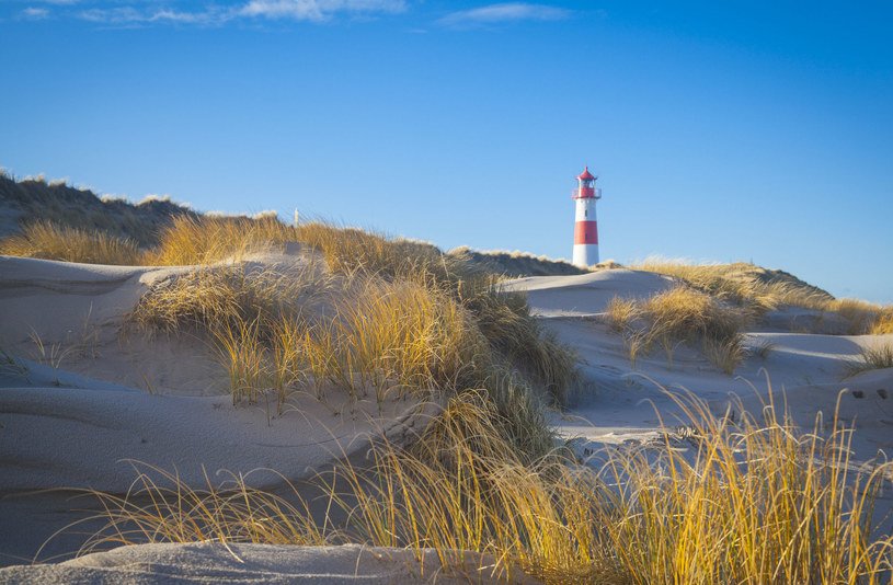 Latarnia morska /©123RF/PICSEL