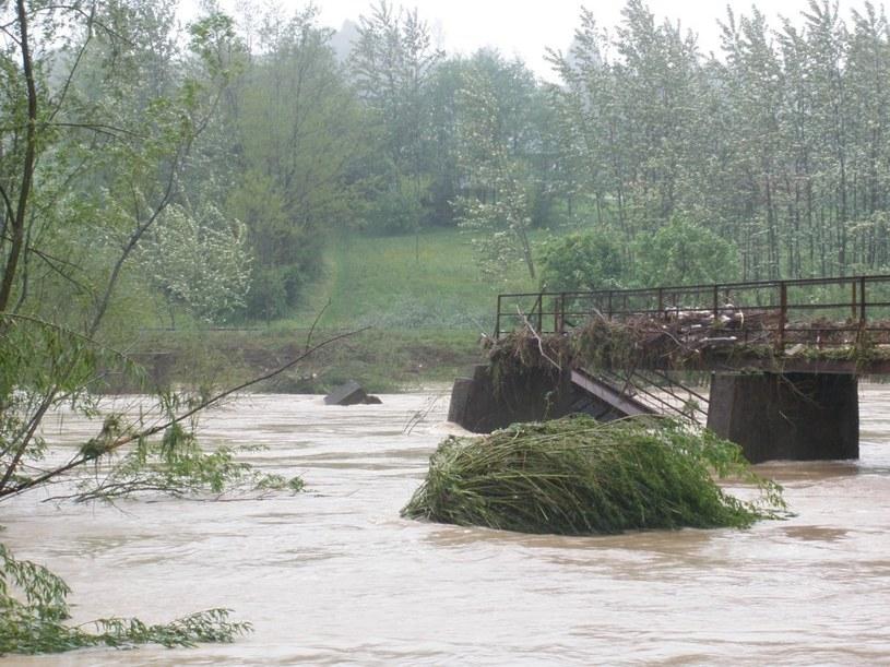 Ława na rzece Biała łącząca Piotrkowice z Łowczowem w gminie Tuchów, fot. Paweł  /Gorąca Linia RMF FM