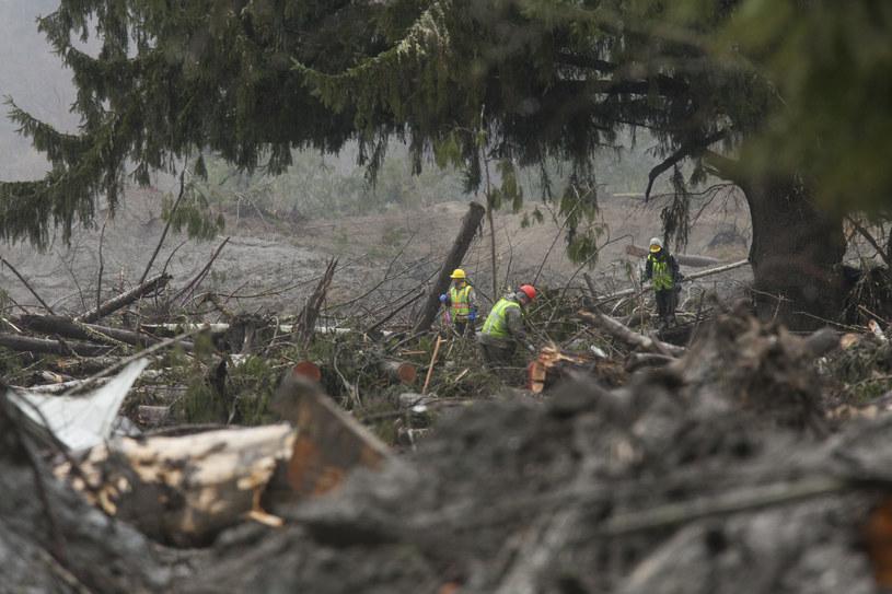 Lawina zniszczyła kilkadziesiąt domów /AFP