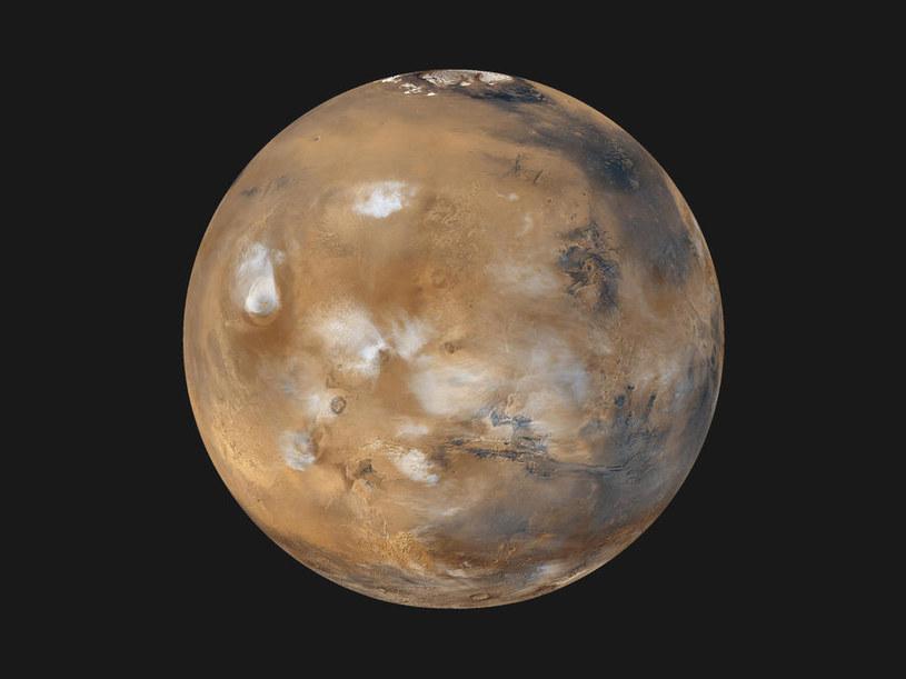 Łazik Curiosity zniszczył życie na Marsie? /NASA