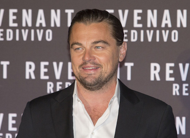 Leonardo DiCaprio /Getty Images