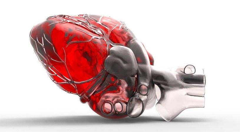 Lepsza diagnostyka chorób serca dzięki sztucznej inteligencj /123RF/PICSEL