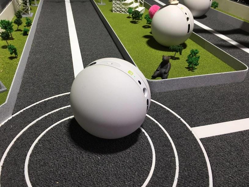 LG Rolling Bot /INTERIA.PL