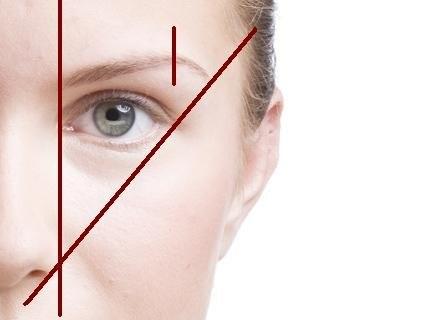 Linie wyznaczające początek, koniec oraz najwyższy punkt brwi