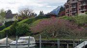 Lucerna: Zabytkowy drewniany most i wycieczka po jeziorze