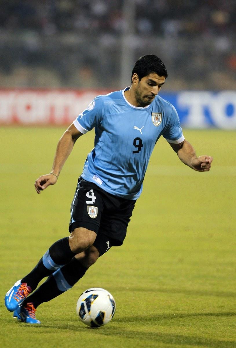 Luis Suarez, gwiazda reprezentacji Urugwaju /AFP