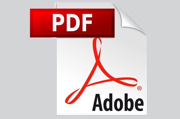 Luka w zabezpieczeniach dotyczy wersji Adobe Acrobat Reader DC 2018.009.20044 i jej poprzedników /materiały prasowe