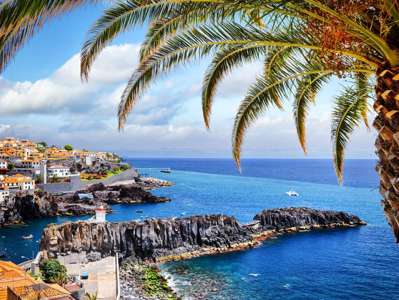 Madera nie bez powodu nazywana jest wyspą wiecznej wiosny /123/RF PICSEL