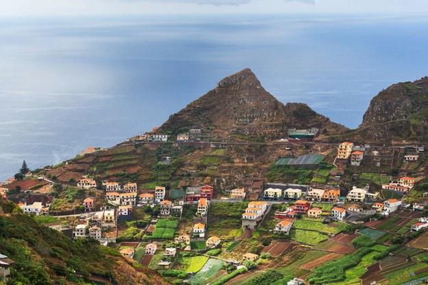 Madera - wiecznie zielona wyspa /123/RF PICSEL