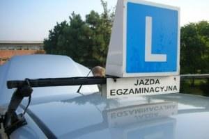 Mając 16 lat można legalnie prowadzić samochód /INTERIA.PL