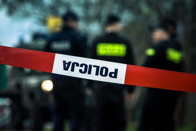 Makabryczne znalezisko w Zielonej Górze (zdjęcie ilustracyjne) /Marek Maliszewski  /Reporter