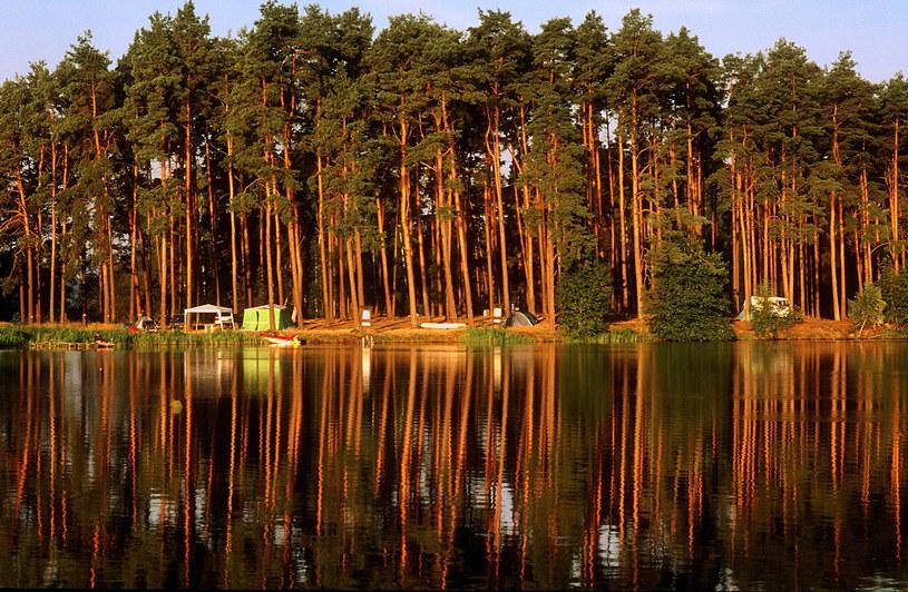 Małe Swornegacie - pole namiotowe nad jeziorem Charzykowskim /Marek Skorupski /Agencja FORUM