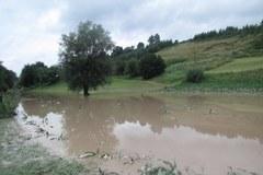 Małopolska: Rzeka Biała podtopiła gospodarstwa w gminie Bobowa