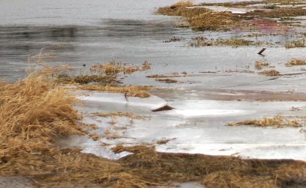 Małopolska: W potoku znaleziono ciało 50-letniego mężczyzny