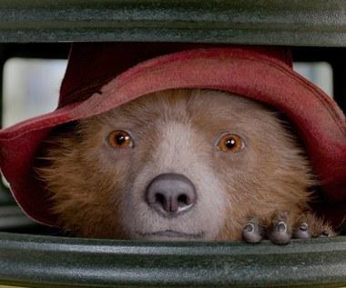 """Mały miś z wielkim sercem. """"Paddington 2"""" już w kinach!"""