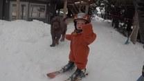 Mały mistrz narciarstwa. Przeuroczy!
