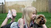 Mamo, tato chcę mieć psa!