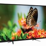 Manta LED5501 - telewizor 55 cali z polskiej fabryk za 1599 zł