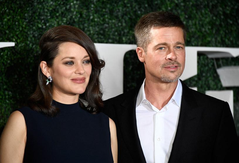 Marion Cotillard i Brad Pitt /Getty Images