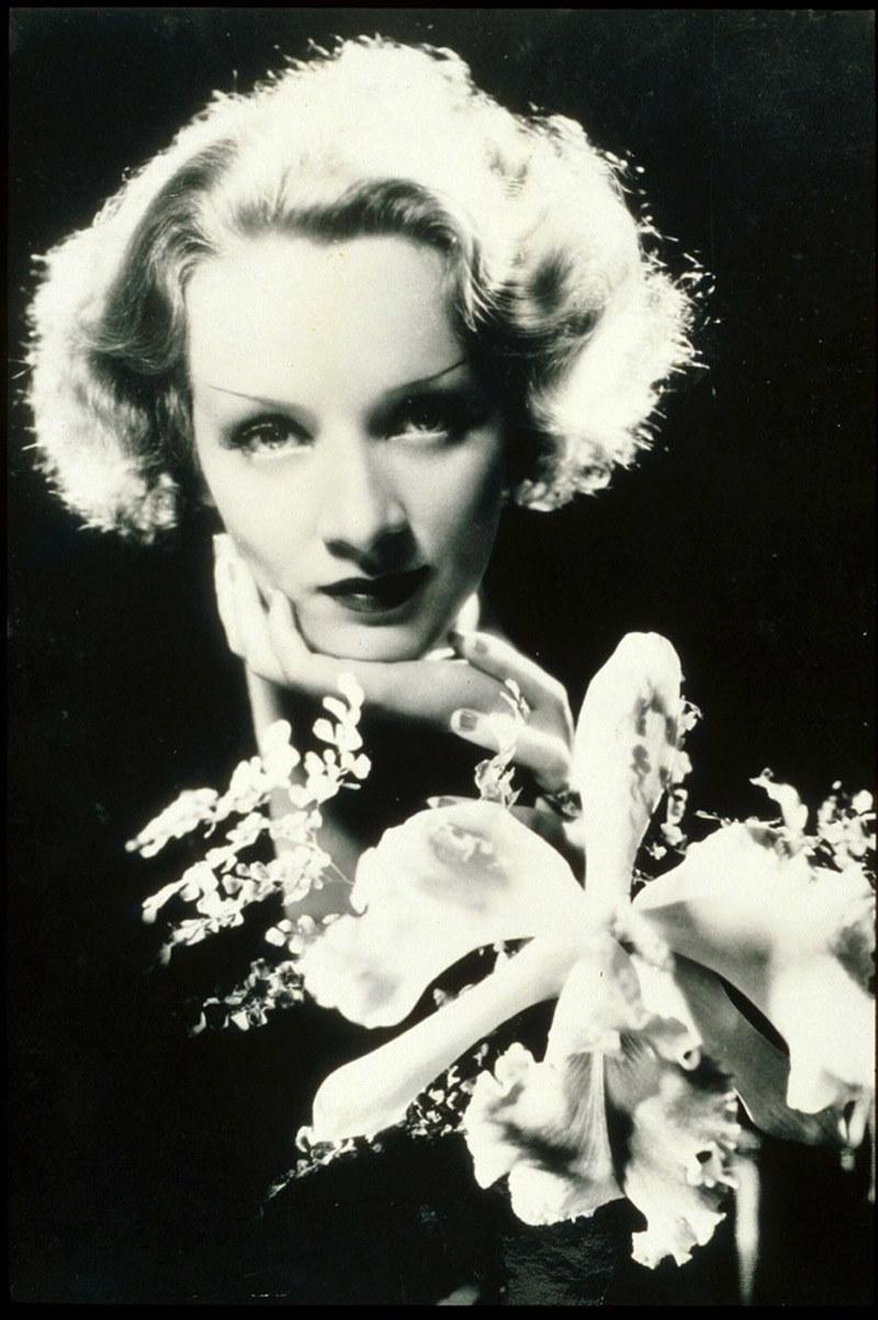 Marlena Dietrich - Burt Bacharach był ulubionym aranżerem i akompaniatorem gwiazdy /East News