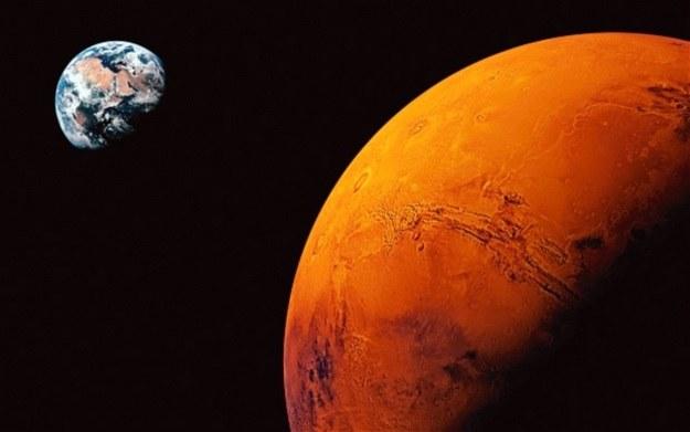 Mars zbombardował nas... życiem /materiały prasowe