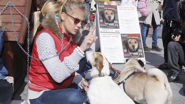 Marta Wierzbicka często angażuje się w akcje na rzecz obrony zwierząt. /Krzemiński Jordan /AKPA
