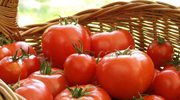 Martha Stewart: Czas na pomidory!