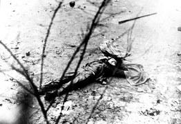 Masakra na Wybrzeżu - grudzień 1970