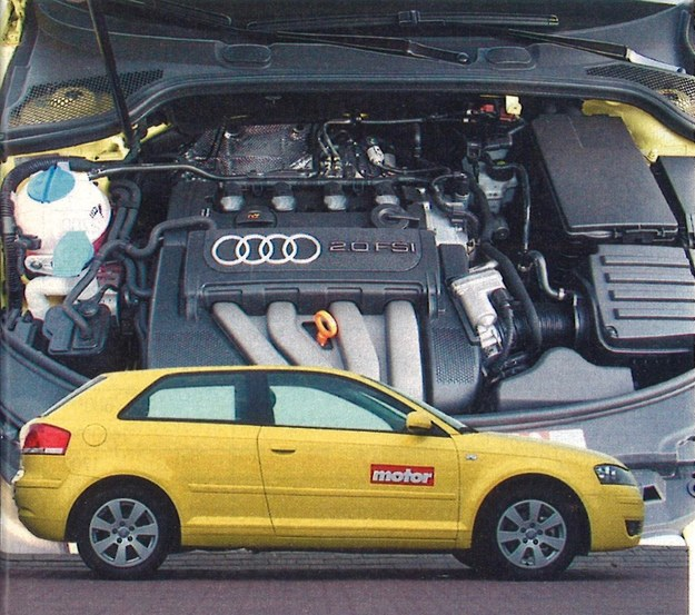 Masywna bryła Audi skrywa potężne, stupięćdziesięciokonne serce. /Motor