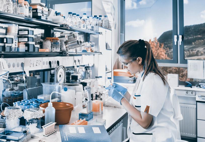 Masz wiele możliwości wsparcia swojej pracy naukowej /123/RF PICSEL