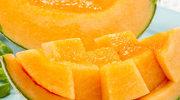 Melon: Zdrowie i rarytas w jednym