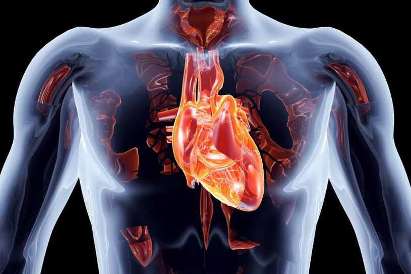 Męskie i kobiece serca starzeją się inaczej /123RF/PICSEL