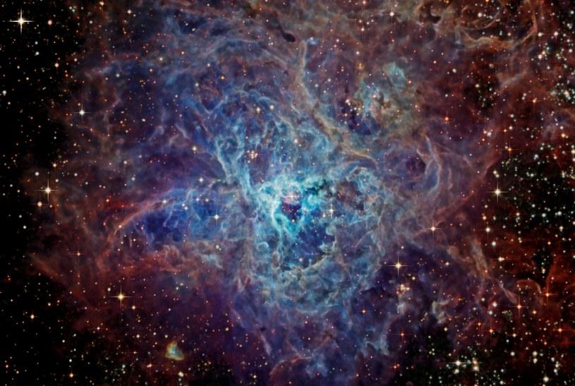 Mgławica Tarantula /NASA