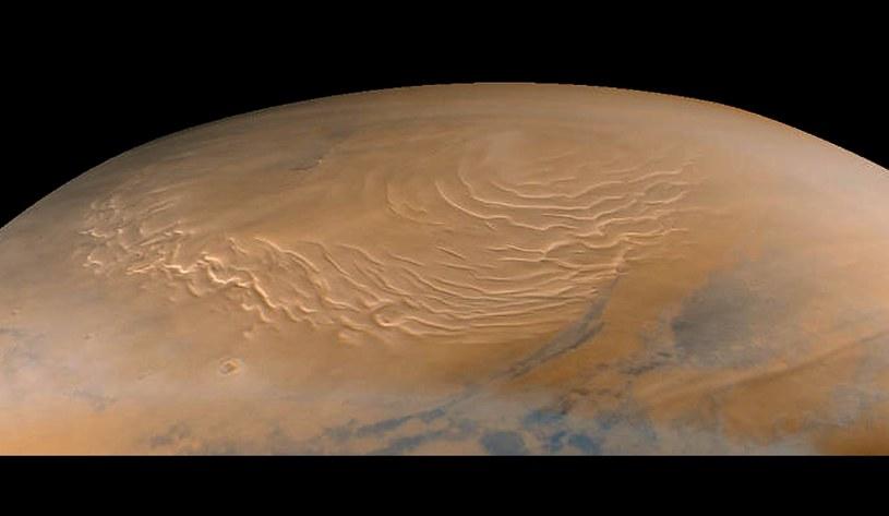 Miejsce lądowania misji ma się znajdować przy biegunie północnym Marsa. /AFP
