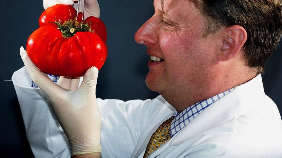 Miejsce pomidora nie jest w lodówce /John Giles    /PAP/EPA
