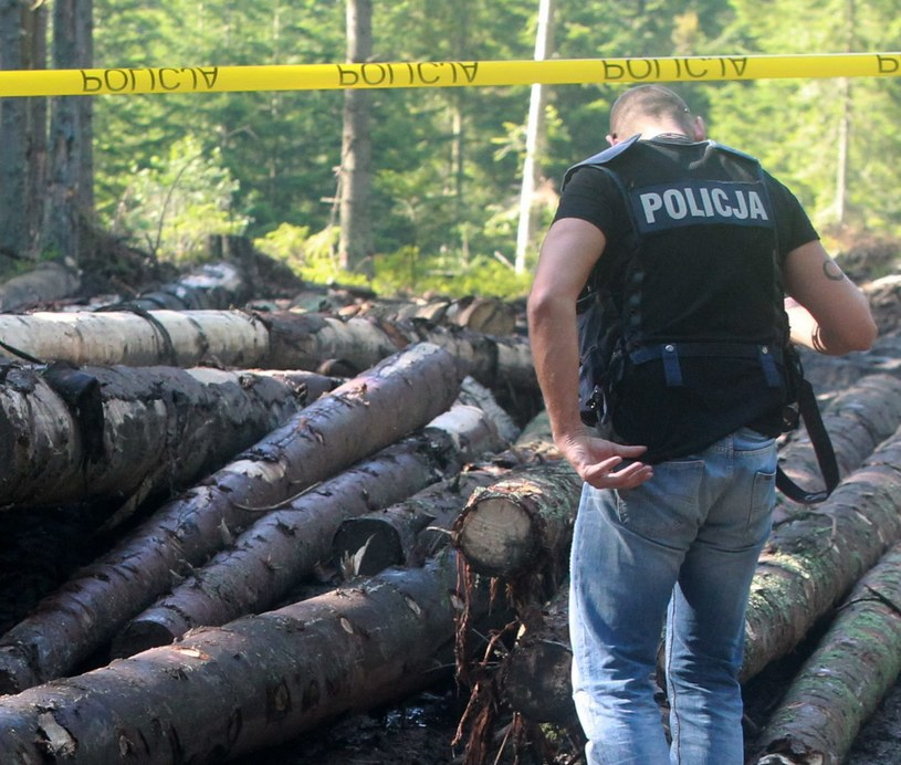 Miejsce, w którym znaleziono ciało 16-latka /Grzegorz Momot /PAP