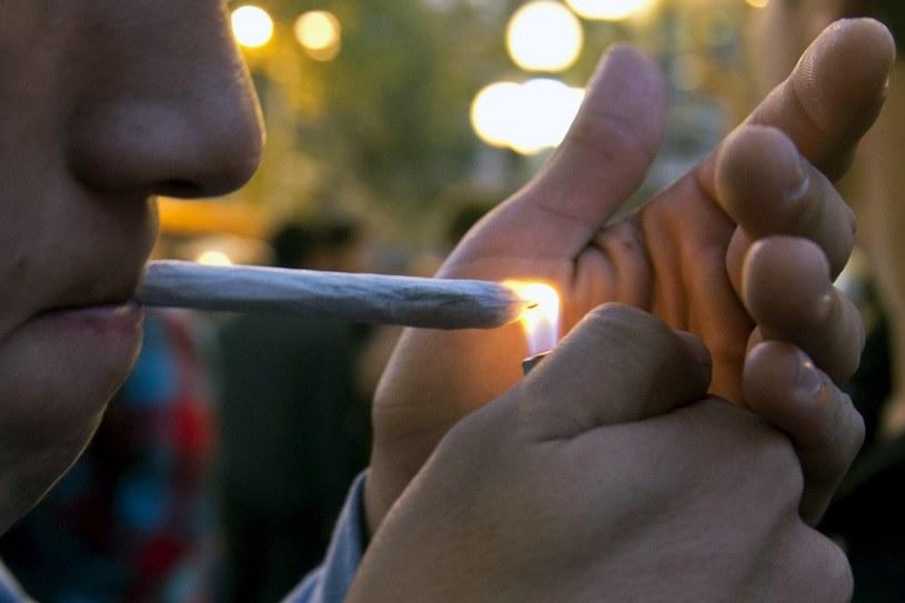 Mieszkańcy Kolorado opowiedzieli się za opodatkowaniem marihuany /AFP
