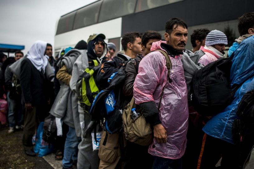 Migranci czekają na granicy z Węgrami, zdj. ilustracyjne /EPA/JANOS MARJAI /PAP/EPA