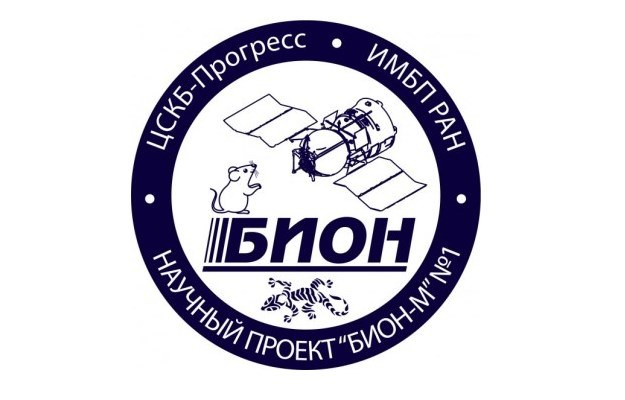 Misja Bion-M2 wystartuje w 2019 roku /materiały prasowe