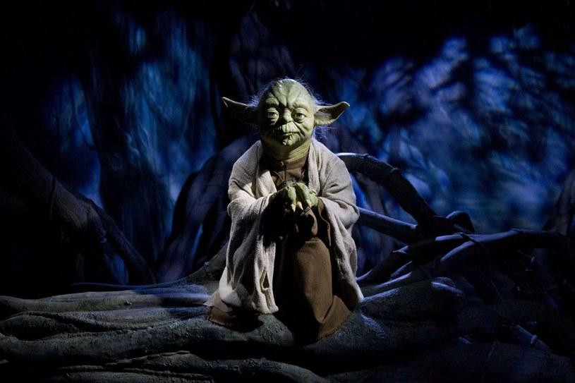 Mistrz Yoda /AFP