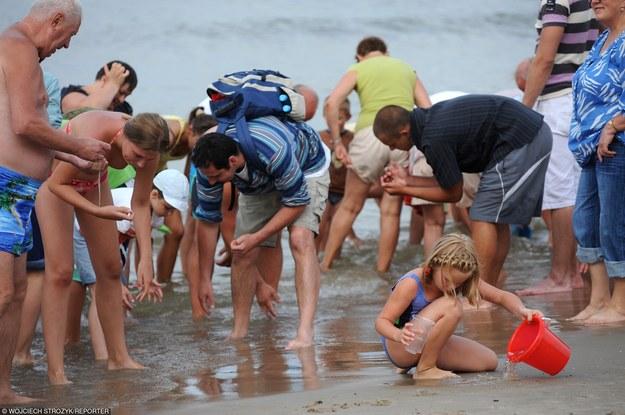 Mistrzostwa świata w poławianiu bursztynu/fot. W. Strożyk /Reporter