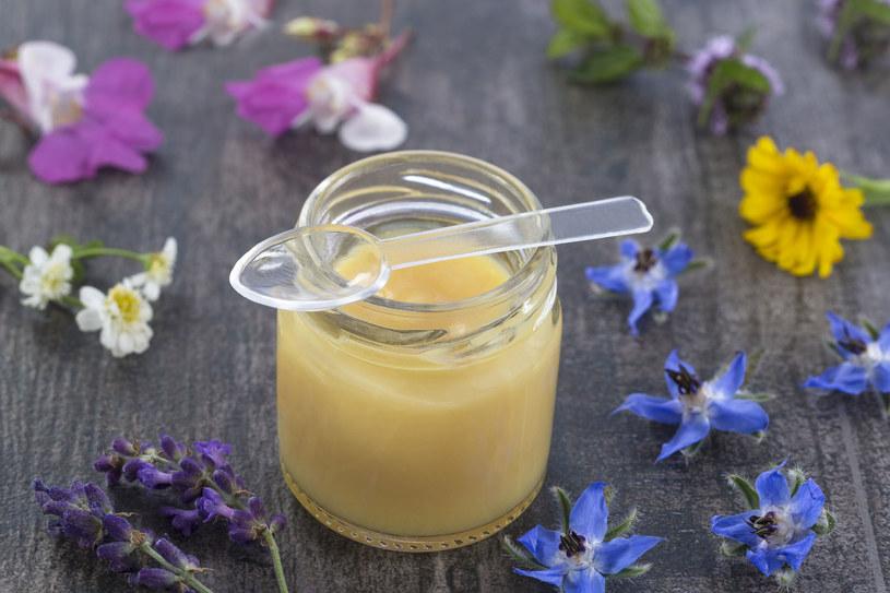 Mleczko pszczele jest skarbnicą witamin z grupy B. Zawiera także witaminy C, D i E. /123RF/PICSEL