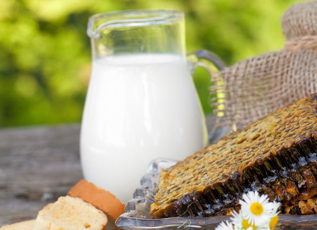 Mleko poprawi smak ryb, wypoleruje srebra /123RF/PICSEL