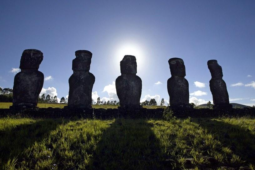 Moai mogą zniknąć z powierzchni ziemi /AFP
