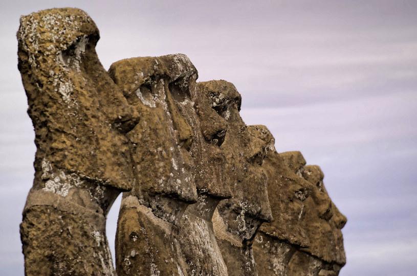 Moai - niezwykłe posągi o kształcie twarzy /AFP
