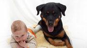 Mój pies i noworodek...