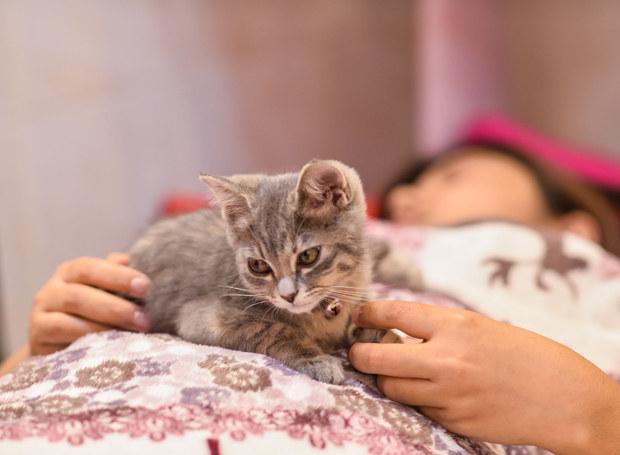 Moja przyjaciółka kochała zwierzęta /123RF/PICSEL