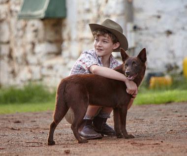 """""""Moje wakacje z Rudym"""" [recenzja]: Pewnego razu w australijskim outbacku"""