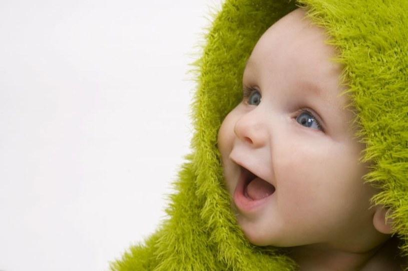 Mózgi noworodków w ciągu pierwszych 90 dni życia zwiększają objętość o 64 proc. /123RF/PICSEL