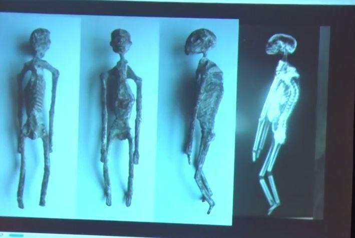 Mumie z Nazca /materiały prasowe